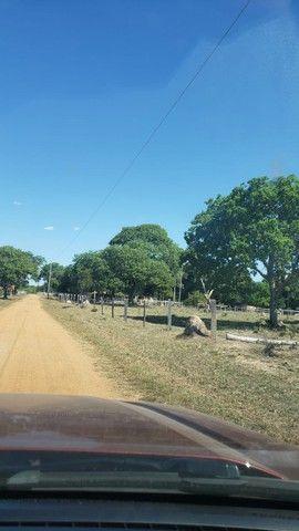 VENDA   Fazenda, em ZONA RURAL, ALTO BOA VISTA - Foto 3