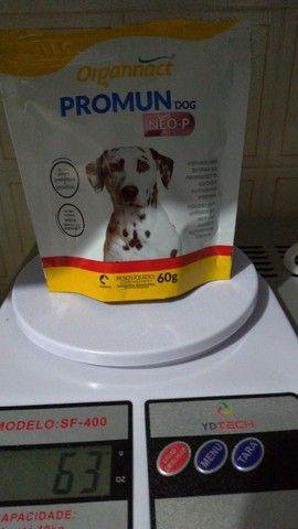 PROMUN DOG NEO-P<br><br> - Foto 2