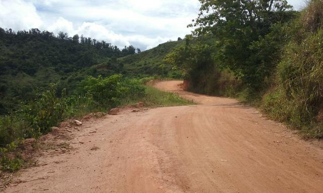 250 hectares terra pronta - Foto 8