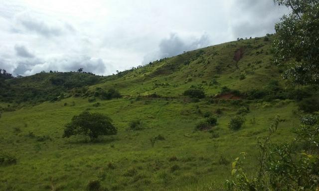 250 hectares terra pronta - Foto 10