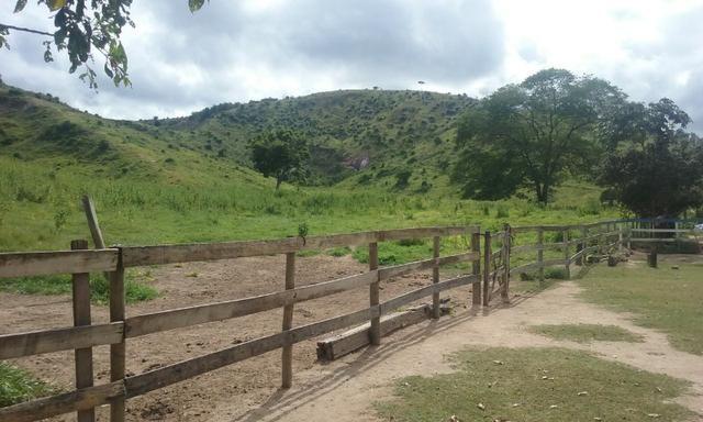 250 hectares terra pronta - Foto 12