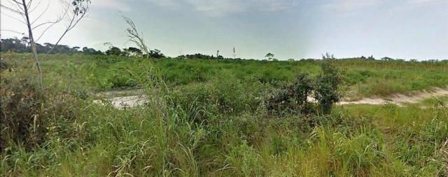 Terreno Arraial Trancoso 66 hectares - Foto 5