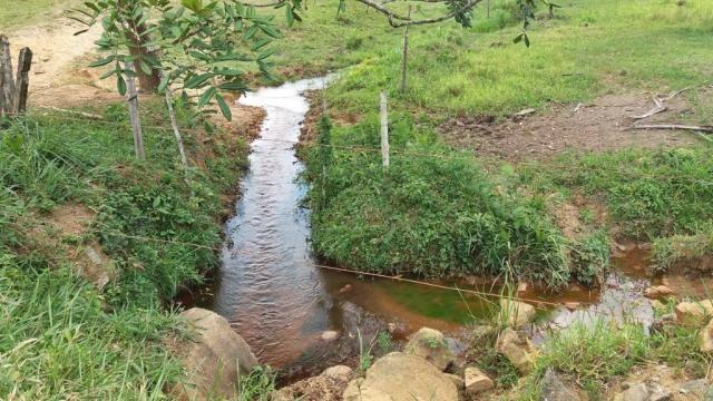 Fazenda 240 has em Tancredo Neves/BA - Foto 6