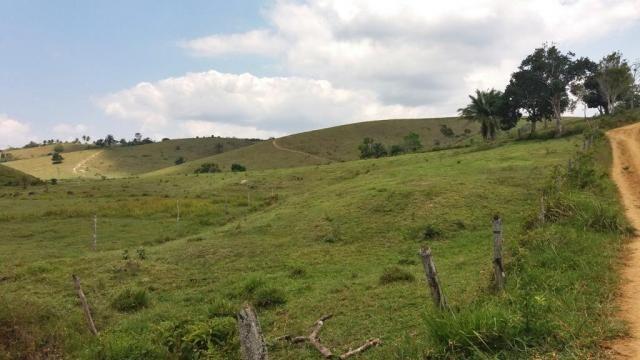 Fazenda 240 has em Tancredo Neves/BA - Foto 9