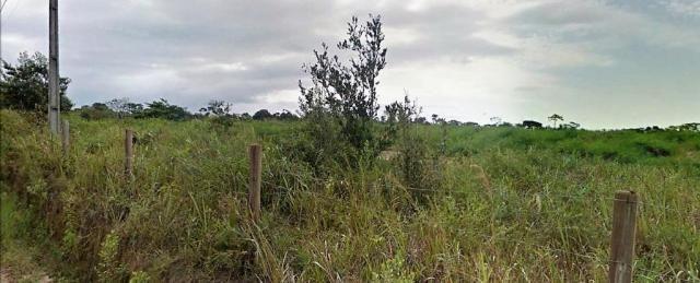 Terreno Arraial Trancoso 66 hectares - Foto 6
