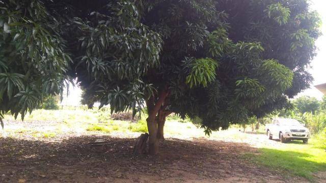 Chácara no lago do manso com 40000 m² por r$ 300.000 - manso - chapada dos guimarães/mt - Foto 11