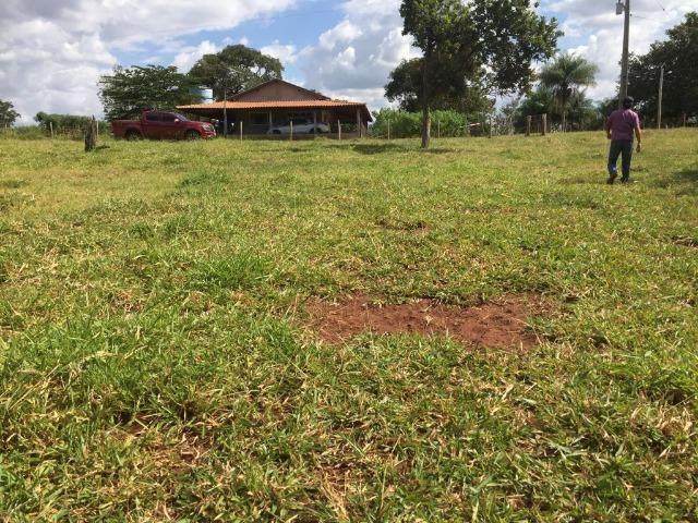 Linda fazenda com casa Sede - Foto 17