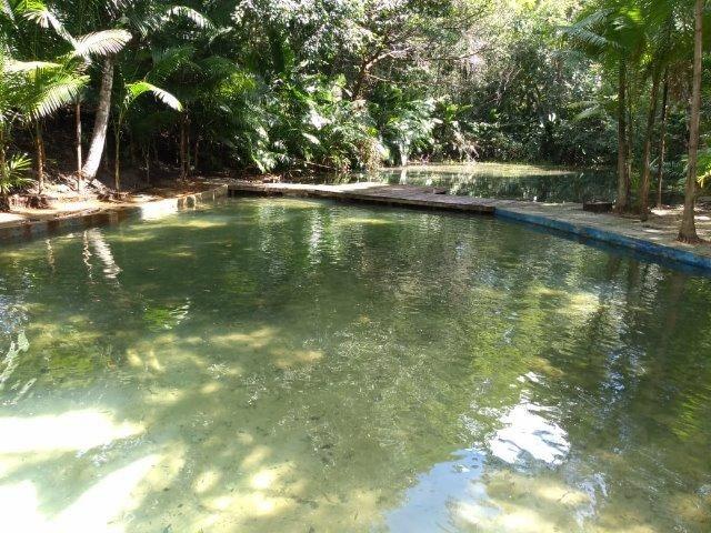 Sitio a 30km de Castanhal 12,5 hectares lindo por 250 mil reais zap 988697836