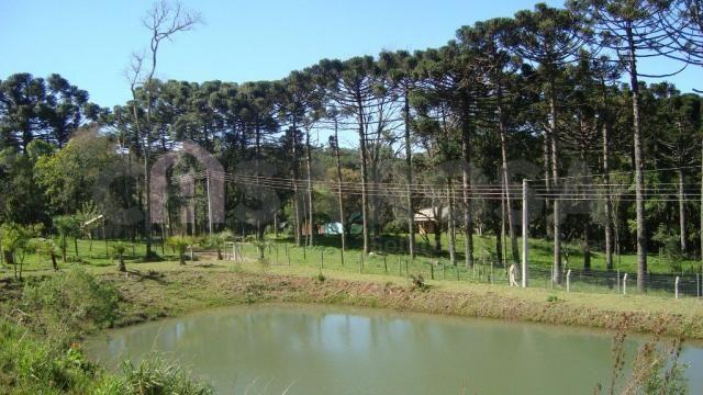 Chácara à venda em Interior, Fazenda souza cod:145 - Foto 7
