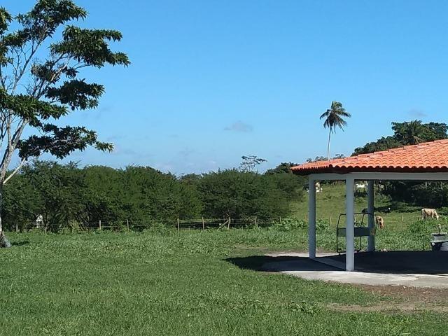 Quinta dos Pássaros - Espaço para eventos - Foto 3