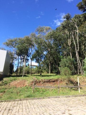 Vendo terreno no Bairro São Luiz