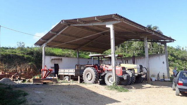 Fazenda 444 Hectares, Pastagem, Produção de Palmito Pupunha (Willian Ricardo) - Foto 3