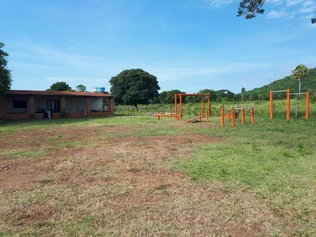 Fazenda à venda, 4 quartos, Centro - Corumbá/MS - Foto 6