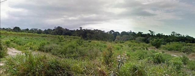 Terreno Arraial Trancoso 66 hectares - Foto 3