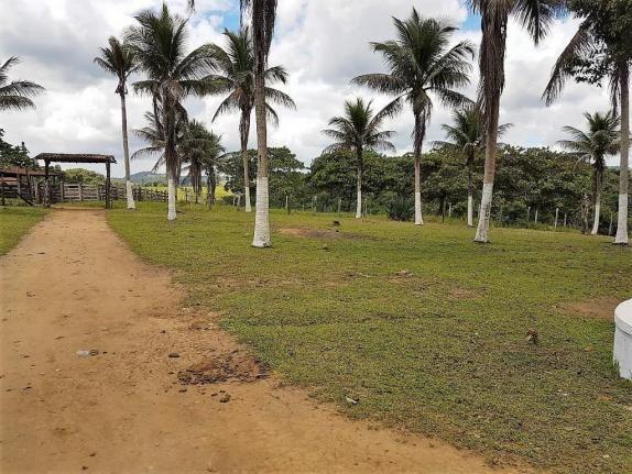 Fazenda 534 has em Tancredo Neves - Foto 2