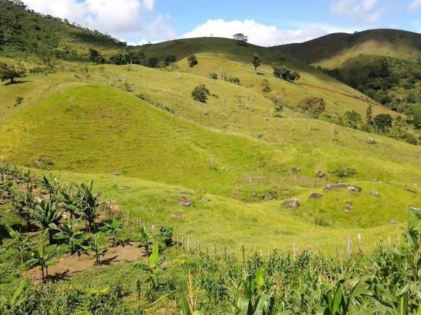 Fazenda em Iguai/BA com 1136 hectares - Foto 11