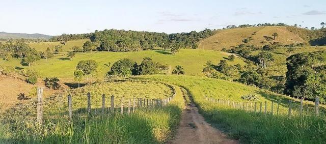 Fazenda 534 has em Tancredo Neves - Foto 9