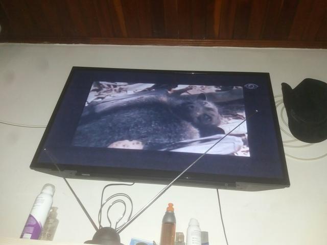 Tv toshiba 6 meses de uso