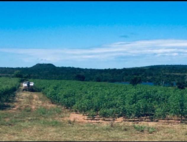 Chácara lago do manso com 3 dormitórios à venda, 150000 m² por r$ 400.000 - zona rural - c - Foto 9
