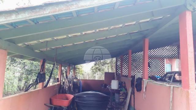 Chácara à venda em Chácara águas claras, Piraquara cod:150595 - Foto 15