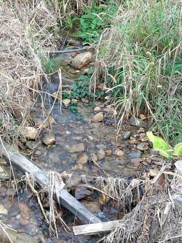 Terreno com 8 alqueires=19 hectares - Foto 12