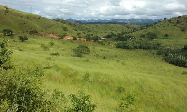 250 hectares terra pronta - Foto 9
