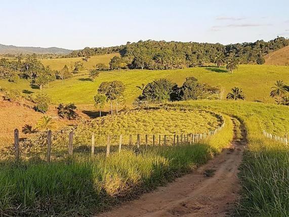 Fazenda 534 has em Tancredo Neves - Foto 12