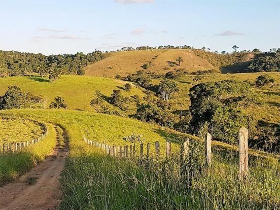 Fazenda 534 has em Tancredo Neves - Foto 17