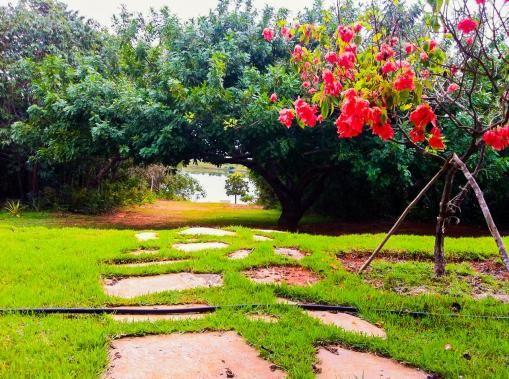 Chácara lago do manso - Foto 5