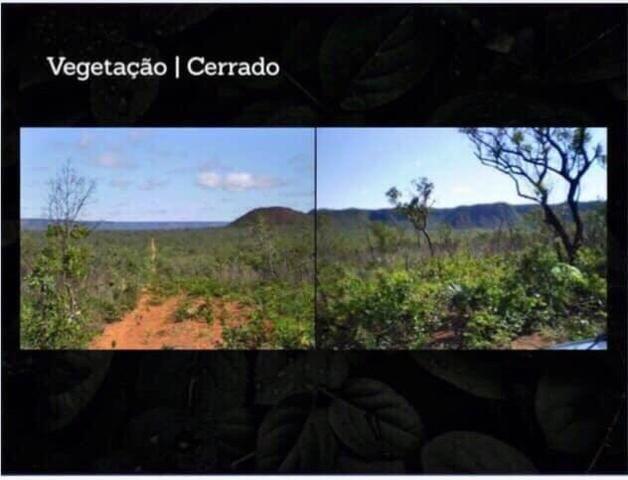 Fazenda na região de Formosa do Rio Preto-BA - Foto 12