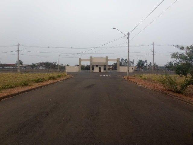 Chacara Terreno Itajobi Otima Oportunidade - Foto 6