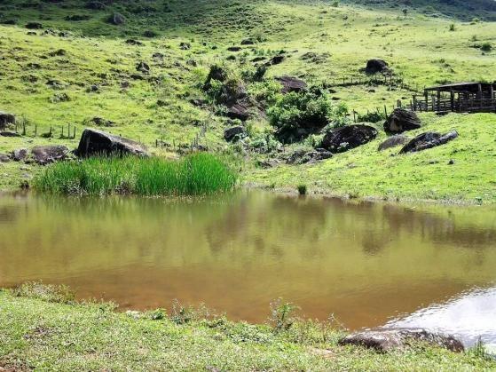 Fazenda em Iguai/BA com 1136 hectares - Foto 14