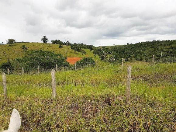 Fazenda 534 has em Tancredo Neves - Foto 15