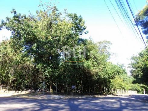 Terreno à venda em Santo andré, São leopoldo cod:VZ4221 - Foto 2