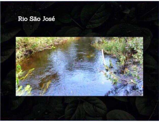 Fazenda na região de Formosa do Rio Preto-BA - Foto 2