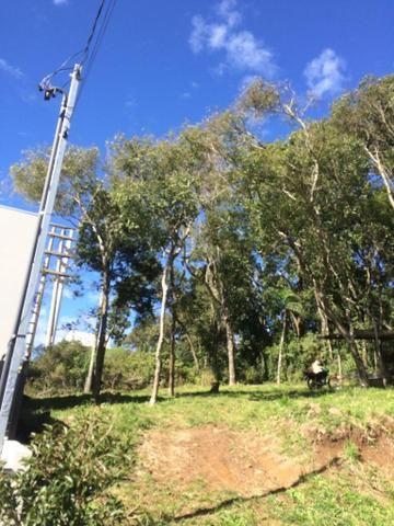 Vendo terreno no Bairro São Luiz - Foto 3