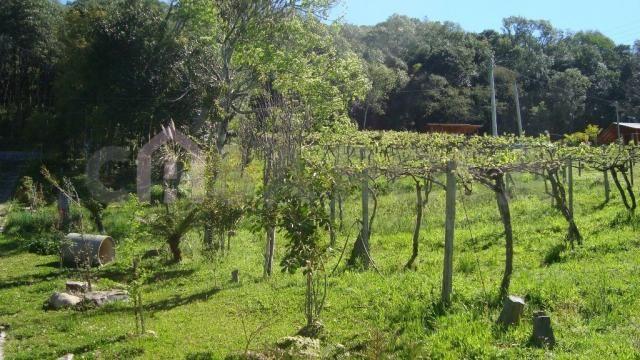 Chácara à venda em Interior, Fazenda souza cod:145 - Foto 9