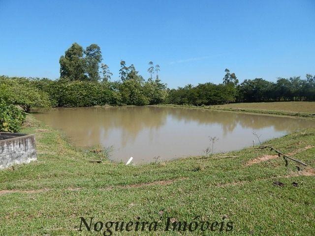 Sítio com 4 lagos, excelente para pesqueiro (Nogueira Imóveis Rurais) - Foto 13