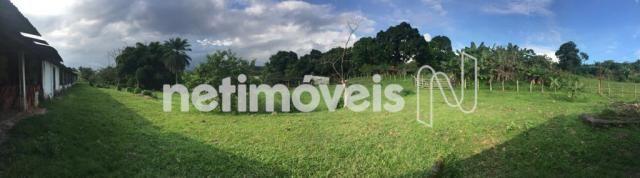 Sítio à venda com 4 dormitórios em Jauá, Camaçari cod:776377 - Foto 12