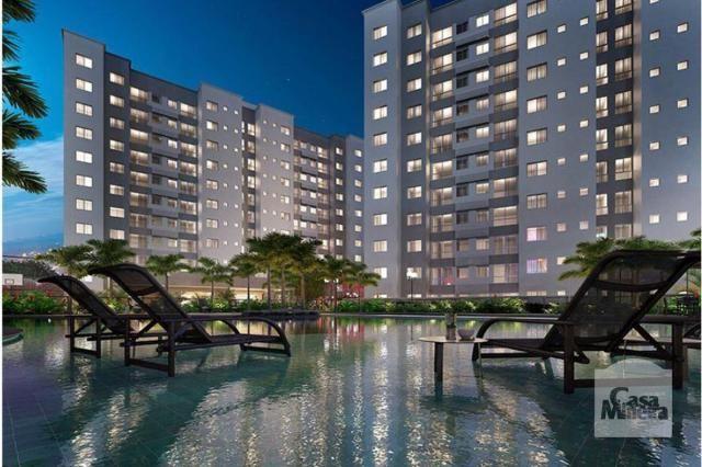 Apartamento à venda com 2 dormitórios em Jaraguá, Belo horizonte cod:259814