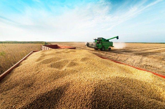 Procuro terras na região de ariguemes para plantio de soja