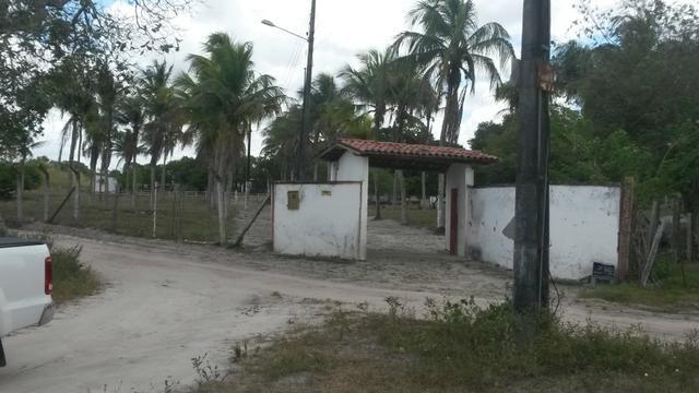 Terreno para Condominios - Foto 4