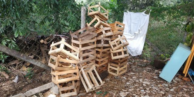 Caixa de madeira - UN