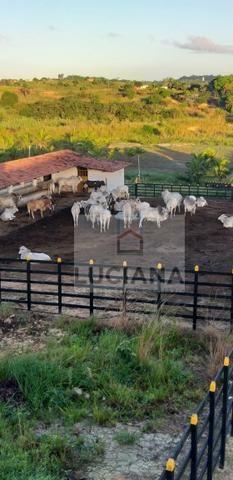 Fazenda em Bonança com 20 hectares (Cód.: 123que) - Foto 9