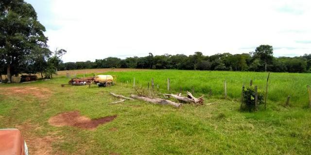 Fazenda com 686he, c/ 350He formado, terra boa, 30km antes Guiratinga-MT - Foto 3