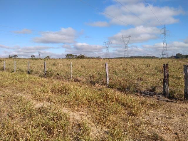 Fazenda c/ 920he, com 600he formados, as margens da BR, a 35km de Cuiabá-MT - Foto 13