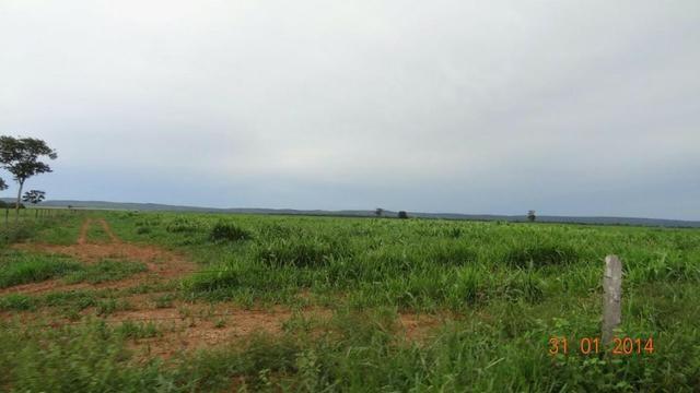 Fazenda c/ 4.500he, C/ 80% aberto, parte faz lavoura, Nova Xavantina-MT - Foto 12