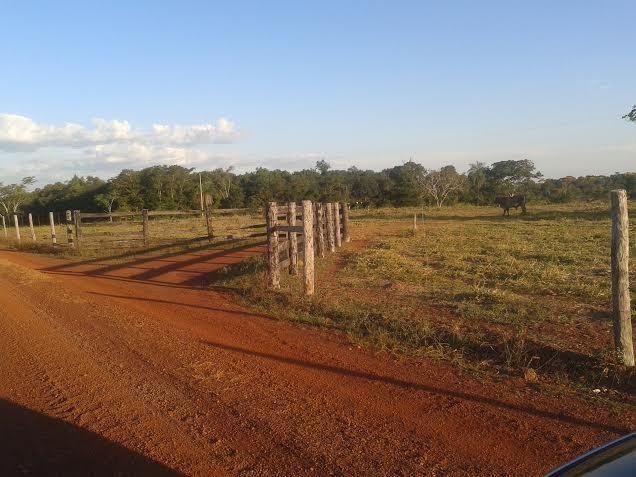 Fazenda c/ 500he c/ 315he formado, a 50km de Cuiabá-MT - Foto 4