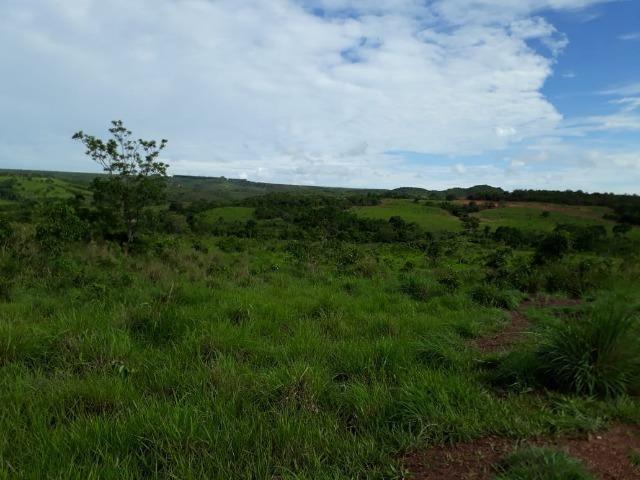 Fazenda c/ 912he, 550he formados, Terra boa, Itiquira-MT - Foto 13