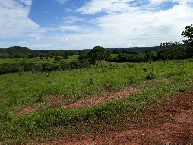 Fazenda c/ 912he, 550he formados, Terra boa, Itiquira-MT - Foto 15